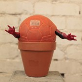 Spiderman Plant